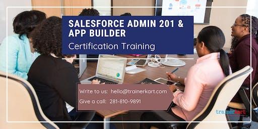 Salesforce Admin 201 and App Builder Certification Training in Charlottesville, VA