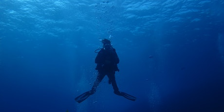 Discover Local Diving - Guided Shore Based Scuba Dive tickets