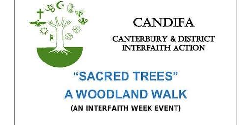 Sacred Trees - Woodland Walk