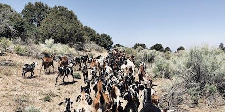 Angeles Crest Creamery Goat Hike tickets