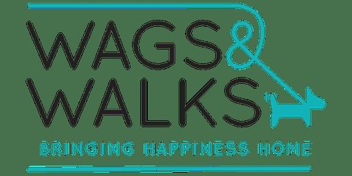 Wags and Walks Volunteer Orientation