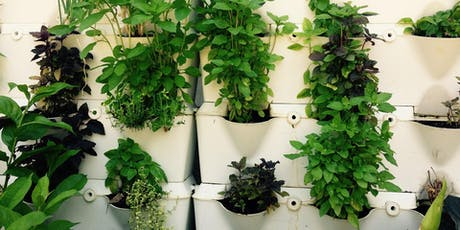 Getting Started with Vertical Gardens, Age 18+, FREE tickets