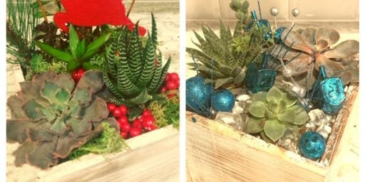 Suds and Succulents: Holiday Succulent Centerpiece Workshop & Branch & Bone Brewery Tour