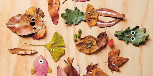 MKids—Nature Crafts with Beci Orpin