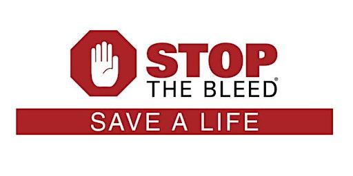 Stop The Bleed, Bleeding Control Basics