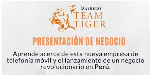 Oportunidad de Negocio - Sesion 1  - Team Rockstar Tiger - (LIMA, Peru)