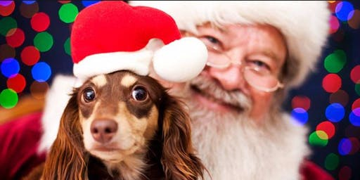 Santa's Pet Photos