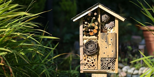 Bug Hotel - School Holiday Program