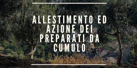 ALLESTIMENTO ED AZIONE DEI PREPARATI DA CUMULO biglietti
