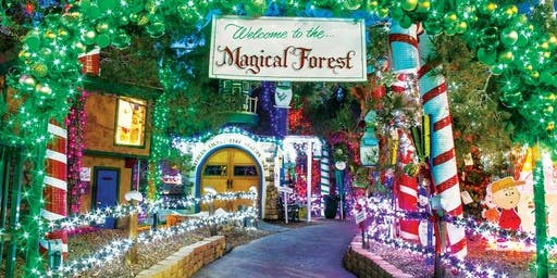 Magical Forest Service Event