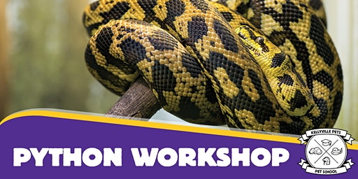 Python Workshops 2020