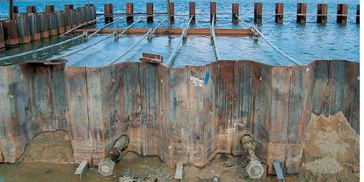 Comportamento sismico di palancole metalliche ancorate