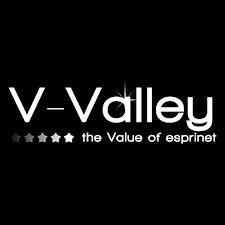 V-Valley logo