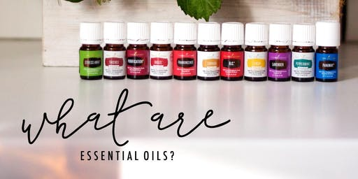 Let's Talk About Oils