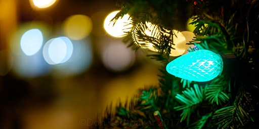 Hunt's Photo Walk: Holiday Lights in Downtown Providence