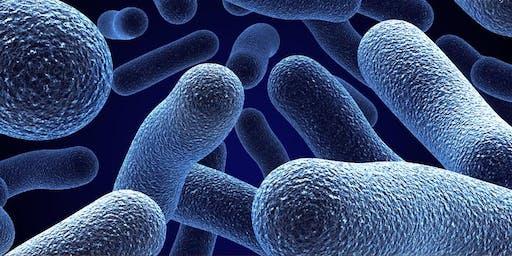 Resistencia de los gérmenes a los Antimicrobianos: Situación Actual -