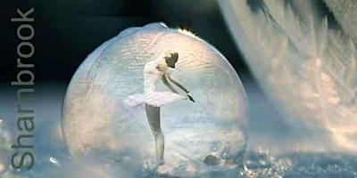 Winter Dance Showcase