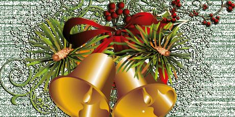 Le G.A.S.P.P vous convie à son traditionnel  souper de Noël avec conférence billets