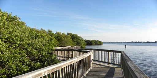 EcoWalk: Florida's Fabulous Plant Heritage