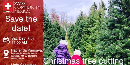 Christmas Tree cutting