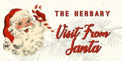 Santa's Visit to The Herbary