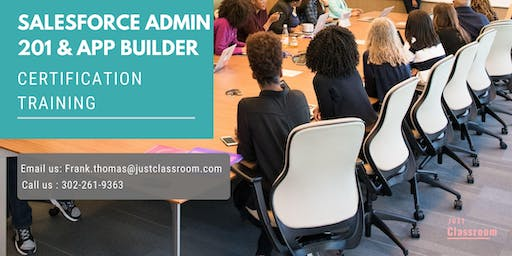 Salesforce Admin 201 and App Builder Certification Training in College Station, TX