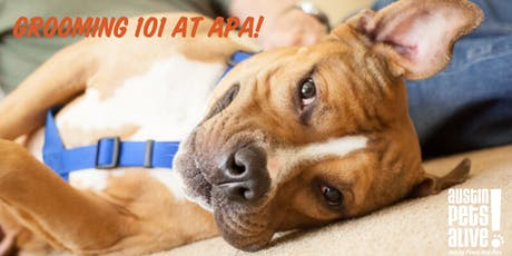 Grooming 101 at Austin Pets Alive! tickets
