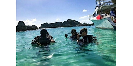 Try Scuba Diving (Non-Certified Divers) (02-03-2020 starts at 11:00 AM) tickets