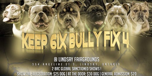 Keep 6ix Bully Fix 4