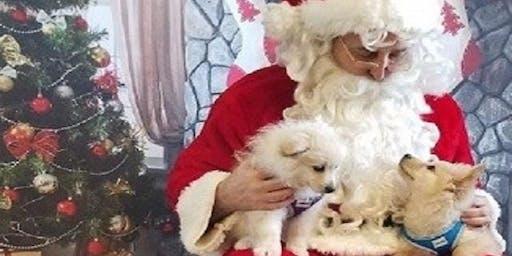 FREE Santa photos provided by Charlotte Black Dogs