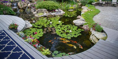 Low Maintenance Pond Keeping Seminar