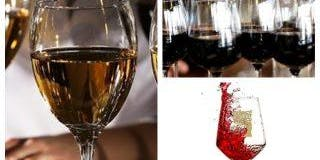 Wine Tasting with Empire Distributors