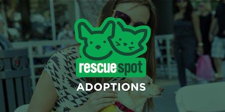 Delaney's Dog Rescue (Studio City) tickets
