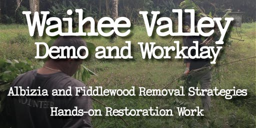 Watershed Restoration Field Day in Waihee Valley: Albizia and Fiddlewood Control