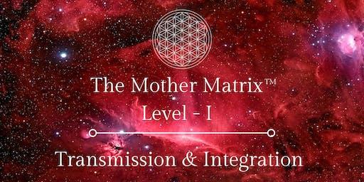 Mother Matrix I - Transmission & Integration