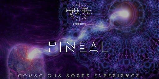 PINEAL - CONSCIOUS SOBER EXPERIENCE
