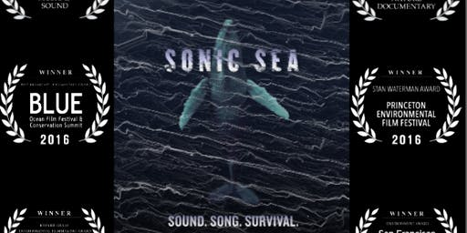 Sonic Sea Screening