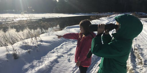 Parry Sound Christmas Bird Count for Kids