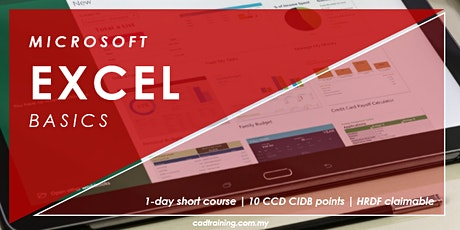Microsoft Excel Basics | MS Excel | 1-day Short Course | 10 CCD CIDB points tickets