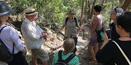 Guided walk at Manly Dam tickets