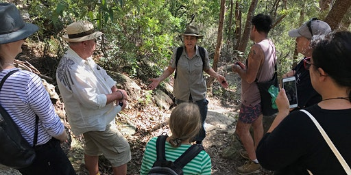 Guided walk at Manly Dam