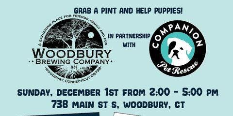 Pints for Pups at the Woodbury Brewing Company