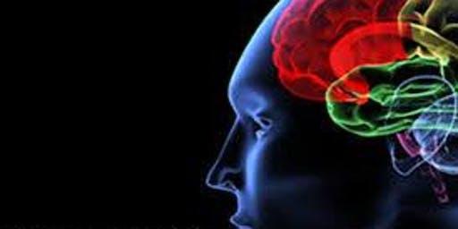 6 CE Brain-Based Trauma Treatment (workbook included)