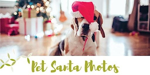 Pet Santa Photos at MarketPlace Warner