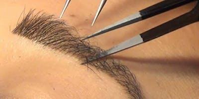 School of Glamology: Eyebrow Extensions Certification (Marietta)