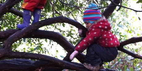 The Natural World - Holistic Childcare Workshop tickets