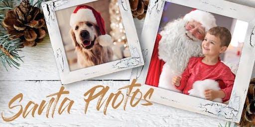 Santa Pet Photography