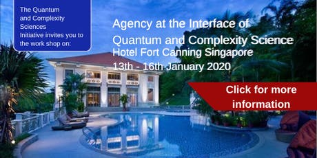 Workshop on Agency at the Interface of Quantum and Complexity Science: January 13th-16th, 2020 tickets