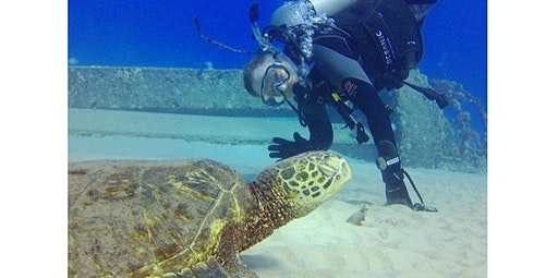 Shore Dive Tours (Certified Divers) (03-31-2020 starts at 7:00 AM)