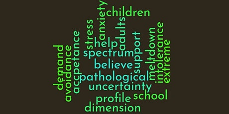 Mapping Experiences of Pathological Demand Avoidance in Ireland tickets